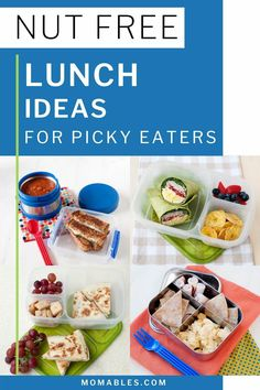 Have a kid that is allergic to nuts? Or maybe your school doesn't allow nuts in lunches anymore? Here are 10 nut free school lunch ideas that look as good as they taste! Box Lunches, Healthy School Lunches, Healthy Meals, Easy Lunch Boxes, Lunch Ideas, Peanut Free Snacks, Free Kids Meals, Eat Lunch, Easy Food To Make