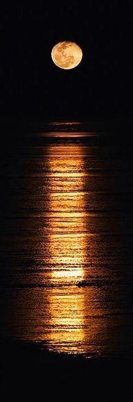 Art Stairway to the moon -- by Broome. it-s-a-beautiful-world Moon Pictures, Pretty Pictures, Moon Pics, Beautiful World, Beautiful Places, Beautiful Moon Images, Beautiful Mess, Beautiful Sunset, Beautiful Landscapes