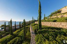 This Mediterranean Mega-Garden Is A Place For Dreamers