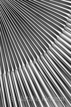 Knives IV ©Natalie Kinnear