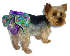 33 Best Dog Diaper Patterns Images On Pinterest Dog Diapers Pet