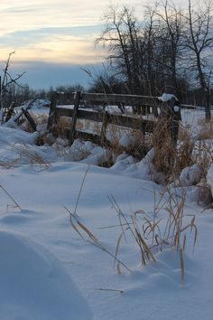 Old wooden fence on a snowy day Snowy Day, Wooden Fence, Clouds, Landscape, Flowers, Photos, Photography, Outdoor, Outdoors