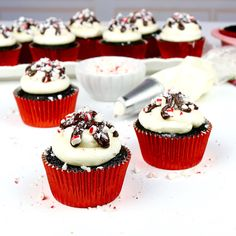 The best Dessert Recipes, Party Treats, Videos, Baking Tips and more, from Food Network's Cupcake Wars winner, Lindsay Ann!