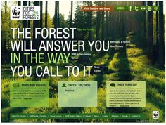 Cities for Forests Website Layout