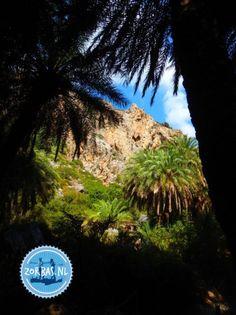 Aktivurlaub-in-der-Sonne-Griechenland-und-Kreta-72 Sun Holidays, Crete Greece, Going On Holiday, Good Thoughts, To Go, Europe, Island, Beach, Summer