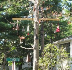 The Tioga Avenue Bell Tree. I believe that this is actually in Ocean Park. Thursday, September a. Old Orchard Beach, Work Site, Ocean Park, Taking Pictures, Wildlife, Bright, Thursday, September