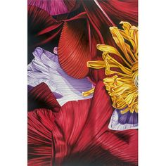 """Buy Art For Less 'Inferno Flower Petal Abstract' by Karl Black Graphic Art on Wrapped Canvas Size: 36"""" H x 24"""" W x 1.5"""" D"""