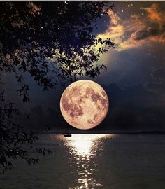 "4,535 Beğenme, 21 Yorum - Instagram'da MODA SON DURUM (@modasondurum): ""Good Night ❤ #goodnight #iyigeceler SnapChat: modasondurum"""