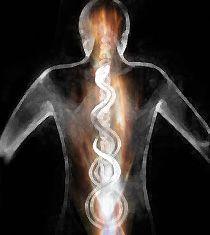 pod : fora » biological » Kundalini Awakening and the Meme of Chakras...