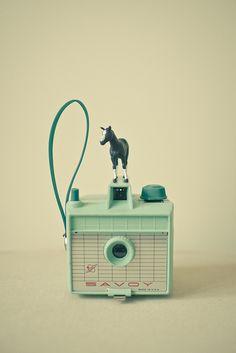 pony + camera