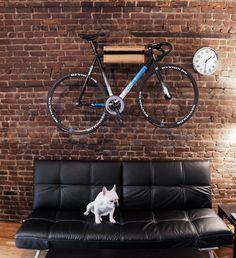 bike is on the wall, pug is on the sofa, all is good