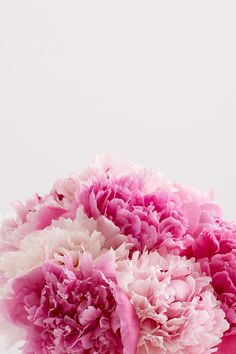 Spotlight on Peonies: Limited-Edition Blooms - ProFlowers Blog