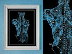 Grays Anatomy Muscles of the Back Massage Room Poster Anatomy Chart Blue Black Art Deco USD) by RelicsRemixt Massage Room Design, Massage Therapy Rooms, Massage Place, Good Massage, Spa Massage, Deco Spa, Acupressure Treatment, Acupuncture, Muscle Anatomy