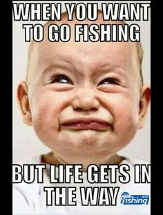 Trout Fishing Tips To Catch More River Trout – Fishing Genius Funny Fishing Memes, Fishing Quotes, Gone Fishing, Fishing Life, Bass Fishing, Fishing Tackle, Fishing Stuff, Fishing Rods, Really Funny Memes