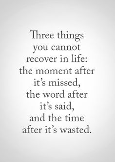 Three things you cannot recover in life :  the moment after it's missed, the word after it's said and the time after it's wasted.