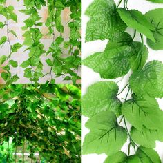 Features: Artificial grape leaf garlands, very beautiful and lifelike. each vine about feet)with leaves. each leaf total length (about 82 feet). Leaf Garland, Faux Plants, Artificial Plants, Decoration, Grape Vines, Planting Flowers, Greenery, Plant Leaves, Herbs