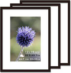 Multi Picture Frames, Dandelion, Flowers, Plants, Dandelions, Plant, Taraxacum Officinale, Royal Icing Flowers, Flower