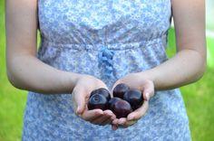 Śliwki – właściwości lecznicze i zdrowotne: http://dailytips.pl/liwki-waciwoci-lecznicze-i-zdrowotne/