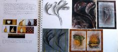 Beautiful natural forms sketchbook investigation - learning from an artist. A page from an IGCSE Art project by Tingjian  He that was awarded Top in the World!