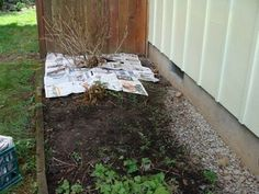 5 Easy Steps To Organic Weed Control for Your Garden Beds & Borders (also tips on using newspaper to control weeds) Garden Weeds, Fruit Garden, Lawn And Garden, Green Garden, Gardening Supplies, Gardening Tips, Organic Weed Control, Weed Barrier, Starting Seeds Indoors