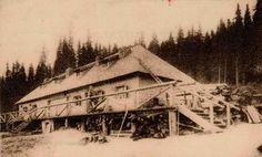 Busteni - Cabana Pestera - 1890