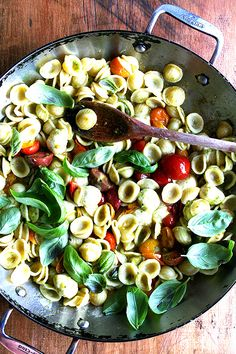 Orecchiette with cherry tomatoes, mozzarella and basil.
