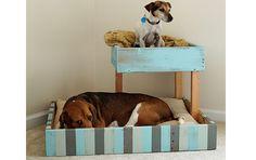 Reutilizando objetos para a cama dos bichinhos de estimação – Ideias Diferentes