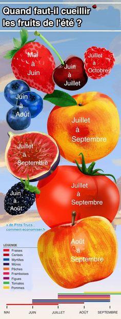 Voici un petit calendrier illustré pour vous aider.  Vous allez pouvoir utiliser ce guide tout au long de l'été et aller cueillir de bons fruits aux bons moments.  Découvrez l'astuce ici : http://www.comment-economiser.fr/quand-cueillir-fruits-ete.html
