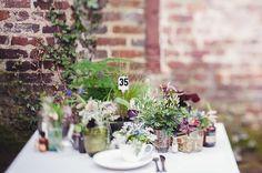 accumulation de plantes / centres de table