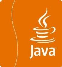 """Java oder Flash: Kaum verzichtbar und unsicher: Dienstprogramme wie Java und Flash sind auf vielen Rechnern installiert. Gleichzeitig werden sie aber auch immer wieder zum Einfallstor für Hacker. Flash-Entwickler Adobe hat deshalb allein diese und vergangene Woche zwei Updates veröffentlicht, Oracle musste seit Anfang des Jahres schon mehrfach Lecks in Java stopfen. """"Solche Programme werden auch deswegen besonders oft angegriffen, weil sie auf jedem Rechner installiert sind"""" (...)"""