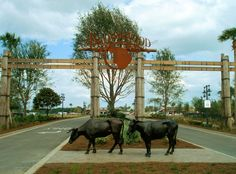 Main entrance to Brownwood Square