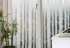 White Birch TREE Forest Frosting Frosted Window Film Privacy Glass /m in Home & Garden, Home Décor, Window Decorations Privacy Glass, Window Privacy, Window Coverings, Window Treatments, Frosted Window Film, White Birch Trees, Window Graphics, Window Films, Sliding Glass Door