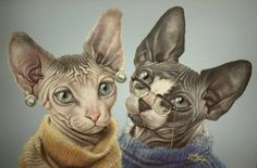 Cats in Sweaters (Acrylic, 2016)