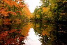 Fall, Jefferson, Maine