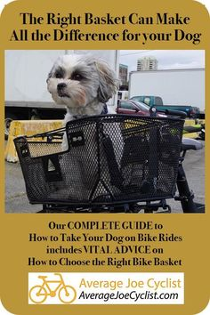 The RIGHT basket can make all the difference for your dog. Our Complete Guide to How to Take Your Dog on Bike Rides includes: how to choose the right bike basket, how to introduce your dog to a bike basket, and how to keep your dog safe on bike rides. Cycling Quotes, Cycling Art, Cycling Jerseys, Cycling Tips, Bicycle Workout, Cycling Workout, Dog Bike Basket, Old Bicycle, Bicycle Brands