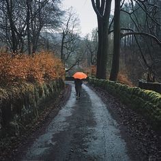 Beautiful iPhoneography by Sara Tasker Rain Photography, Grunge Photography, Photography Ideas, Rainy Day Photography, Champs, Gloomy Day, Autumn Aesthetic, Rainy Days, Beautiful Places
