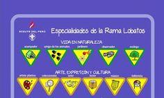 Peru: Especialidades de la Rama Lobatos - alle Proficiency Badges mehrerer Länder (nur Bilder)