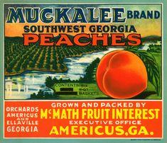 Vintage Georgia Peach Crate Labels
