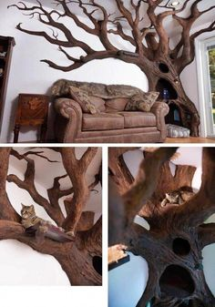 Enjoy a Heaping Batch of Funny Pics and Memes to Kill Some Time - Funny Gallery #WoodworkingFurnitureTipsAndTricks