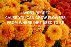 I won't regret / cause you can grow flowers / from where dirt used to be :: Kate Nash, Merry Happy