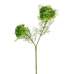 Artificial Flower Elderflower Spray Single Stem Yellow & Green - Irish Plants Direct