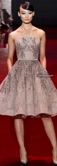 Elie Saab FW 2014 Haute Couture - I do believe you already have a dress very very similar to this!