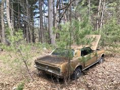 1968 Mustang in the woods near my parents house [Massachusetts USA] - Abandoned Architecture - Big City Buildings - Modern and Historical Buildings - City Planning - Travel Photography Destinations - Amazing Ugly and Beautiful Places City Buildings, Modern Buildings, 1968 Mustang, Single Handle Bathroom Faucet, Massachusetts Usa, Banner Images, Urban Exploration, Fantasy Artwork, Abandoned Places
