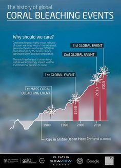 History of coral bleaching events