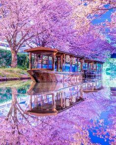 Jukkokubune, Japan 👍 katalay.net/amazing-places/ #Jukkokubune #Japan Monte Fuji, Christmas Town, Sky Landscape, Beautiful Places In The World, Amazing Places, Lost City, Kyoto Japan, Japan Travel, Amazing Nature
