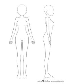 anime girl body outline(I don't think drawing in the right is correct)