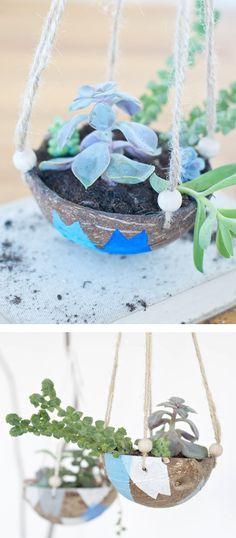 DIY coconut planter