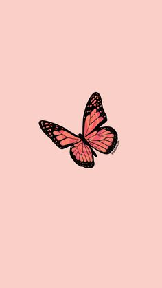 Orange and Pink Butterfly Notebook by daisiawalker Cartoon Wallpaper, Phone Wallpaper Images, Cute Patterns Wallpaper, Wallpaper Stickers, Dark Wallpaper, Pastell Wallpaper, Phone Wallpapers, Wallpaper Quotes, Pastel Background Wallpapers