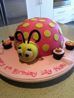 Pink Lady bug cake for a 1st birthday. So cute.