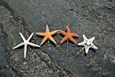 Set of 4 Cute Starfish Mermaid Bobby Pins Hair Accessories - Bridal Accessories, Wedding Hair Clip, Beach Wedding, Ariel Mermaid Hairclip